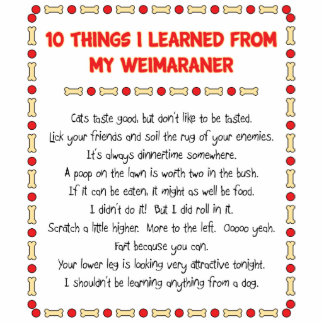 Funny Things I Learned From My Weimaraner Standing Photo Sculpture