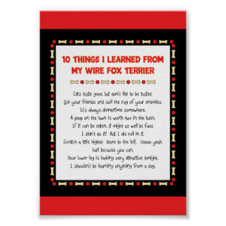 Funny Things I Learned From My Wire Fox Terrier Poster