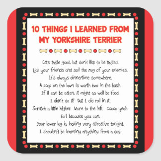 Funny Things I Learned From My Yorkshire Terrier Square Sticker