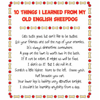 Funny Things I Learned From Old English Sheepdog Standing Photo Sculpture
