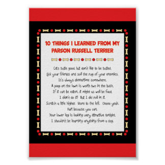 Funny Things I Learned From Parson Russell Terrier Poster