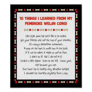 Funny Things I Learned From Pembroke Welsh Corgi Poster