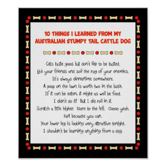 Funny Things I Learned From Stumpy Tail Cattle Dog Poster