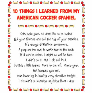 Funny Things Learned From American Cocker Spaniel Standing Photo Sculpture