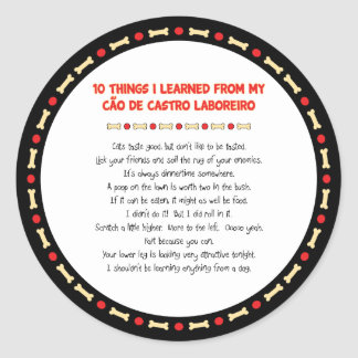 Funny Things Learned From Cão de Castro Laboreiro Classic Round Sticker
