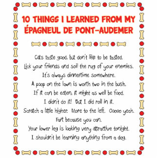 Funny Things Learned From Épagneul de Pont-Audemer Standing Photo Sculpture