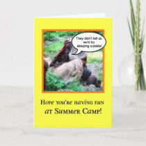 Funny Thinking of You, Summer Camp, Orangutans Card