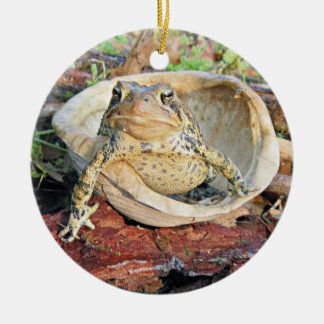 Funny TOADLY SEXY Toad Ceramic Ornament