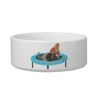 Funny Trampoline Cats Painting, Pet Dish Pet Food Bowls