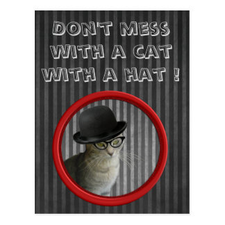 Funny trendy modern cat with hat postcard