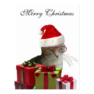 Funny trendy Santa wise cat Christmas Postcards