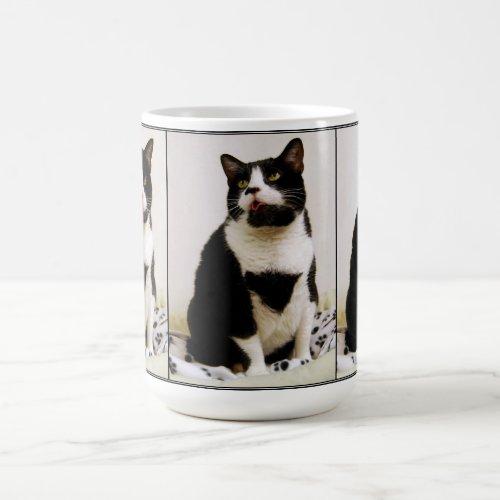 Funny Tuxedo Cat Trio Mug