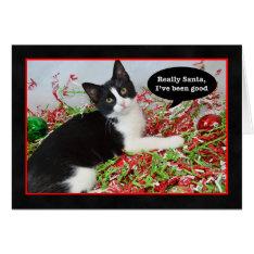 Funny Tuxedo Kitten Cat Christmas Card at Zazzle