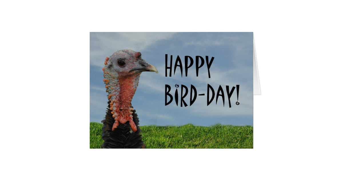 Funny Ugly Turkey Happy Thanksgiving Birthday Card ...