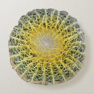 Funny Uncomfortable Botanical Globe Cactus