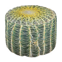 Funny Uncomfortable Tropical Cactus Pouf
