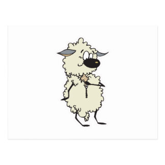 funny unzipping wool sheep post cards