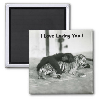 Funny Valentines Day Monkey and Tiger Refrigerator Magnet