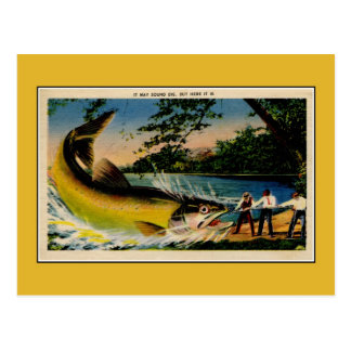 Funny vintage exaggerated fishing postcard