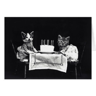 Funny vintage kitty cat dressed kittens birthday greeting cards