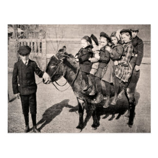 Funny Vintage Portrait Children Donkey Balancing Postcard
