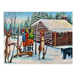 Funny Vintage Postcard Deer Hunting Season