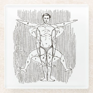 Funny Vintage Swimming Diagram Glass Coaster
