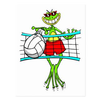 Funny Volleyball Gift Postcard