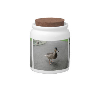 Funny Waddling Duck Candy Jar
