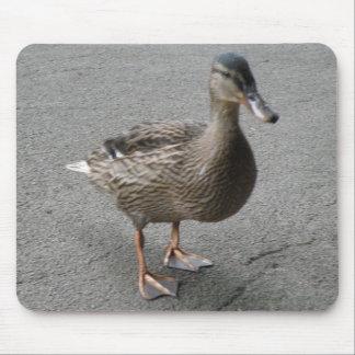Funny Waddling Duck Mousepad