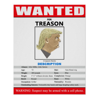 Funny Wanted Trump For Treason Poster