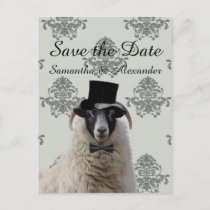 Funny wedding groom sheep  save the date announcement postcard