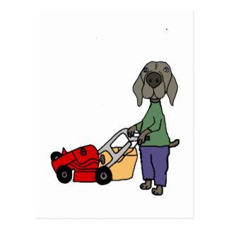 Funny Weimaraner Dog Mowing Lawn Art Postcard