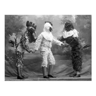 Funny Weird Vintage Photograph of Chicken Costumes Postcard