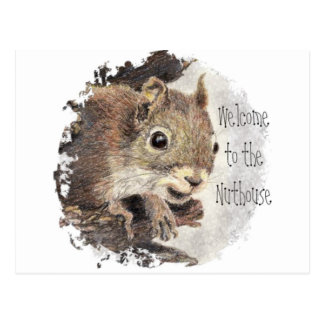 Funny, Welcome to the Nuthouse, Squirrel, Animal Postcard