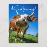 """Funny We're Mooving Moving Announcement Cow  (Visit shop for more moving announcements. Type """"moving"""" in the Searchbox)"""