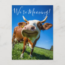 Funny We're Mooving Moving Announcement Cow