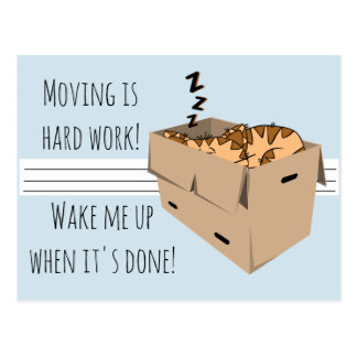 """Funny """"We're Moving"""" Cat New Address Announcements Postcard"""