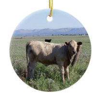 Funny Western Cattle Cows Rural Scene Two-sided Ceramic Ornament
