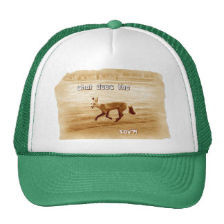 funny what does the fox say trucker hat