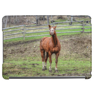 Funny Whinnying Chestnut Stallion on Horse Ranch Cover For iPad Air