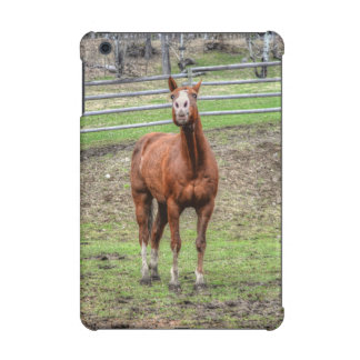 Funny Whinnying Chestnut Stallion on Horse Ranch iPad Mini Case