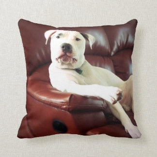 funny white pit bull dog on the couch throw pillow