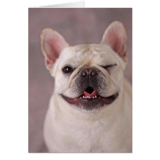 Funny winking Dog French Bulldog Card