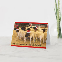 Funny, Wish Ewe a Merry Christmas, no BAA humbugs Holiday Card
