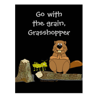 Funny Wood Turning Beaver and Grasshopper Cartoon Postcard
