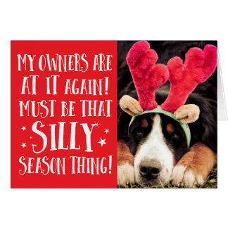 Funny Xmas Quote Pets Christmas Greeting Card