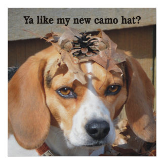 Funny Ya like my new camo hat? Beagle Dog Poster