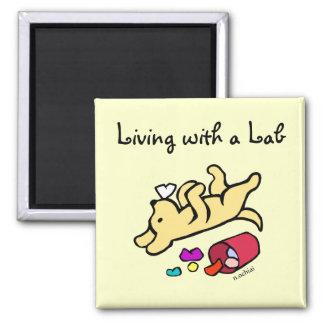 Funny Yellow Labrador Cartoon 2 Inch Square Magnet