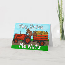 Funny You Drive Me Nuts Squirrel Pun Valentine's Holiday Card